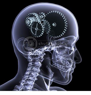 Problème d'oxygène - Page 3 Cerebro+en+Gramsciman%25C3%25ADa+2