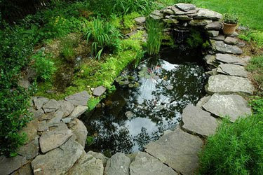 Pond Liner Blog Spring Ahead With Entry Level Pond Kits