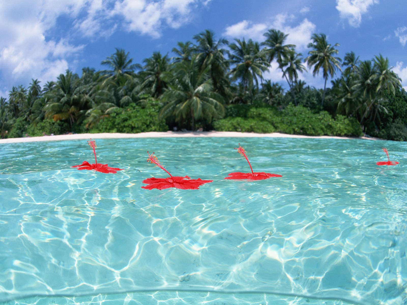 Обои на рабочий стол Мальдивские острова