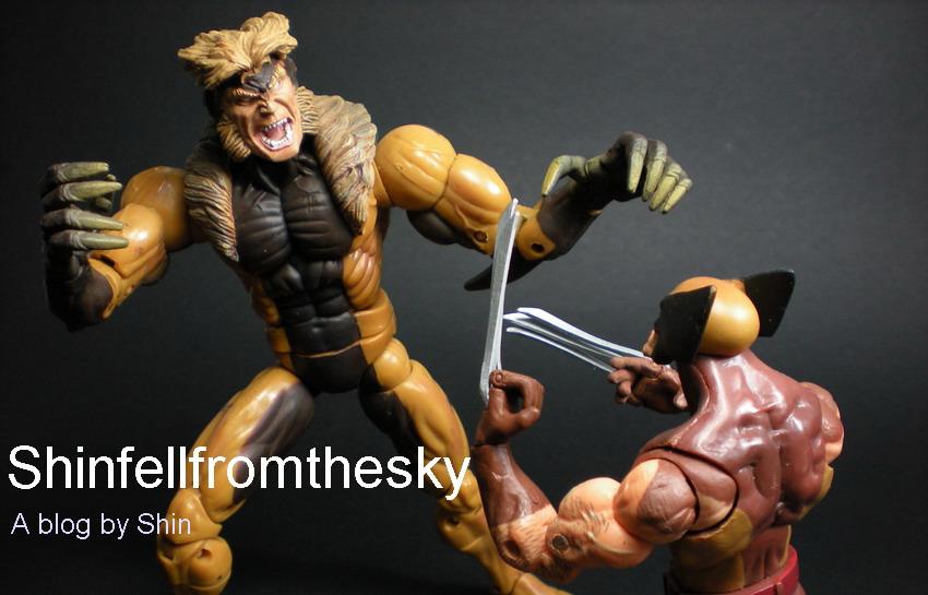 Shinfellfromthesky