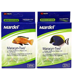 Mardel Maracyn Two - Fish Medication