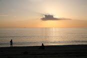 Παραλίες της Άνδρου