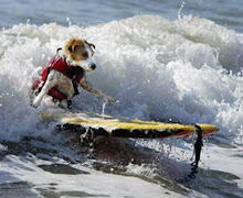 SURFER DUDE!!!
