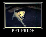 Sign Up  for Pet Pride!