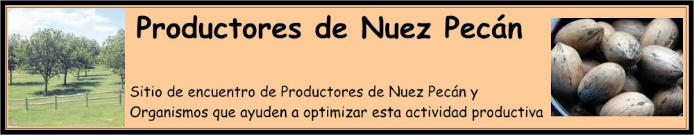 Productores de Nuez Pecán