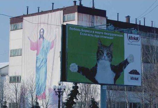 [jesus+cat.jpg]