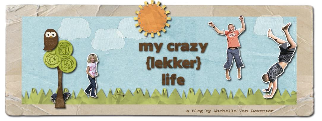 My crazy lekker life
