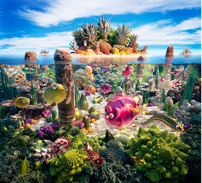 Coralscape - Foodscapes