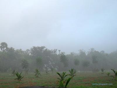 Rain Scenes