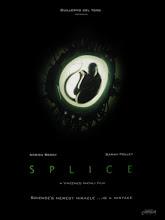"""""""Splice"""""""