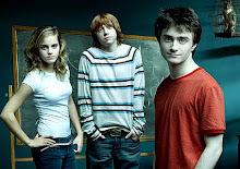 """""""Harry Potter: y las reliquias de la muerte (Primera parte)"""" se estrenara el 19 de Noviembre."""
