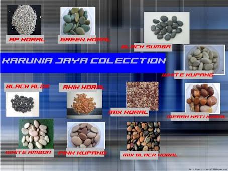 Batu Koral Keramik - Rumah Minimalis Modern