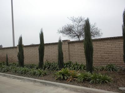 The walls around the Sun and Fun RV Park in Tulare, California: