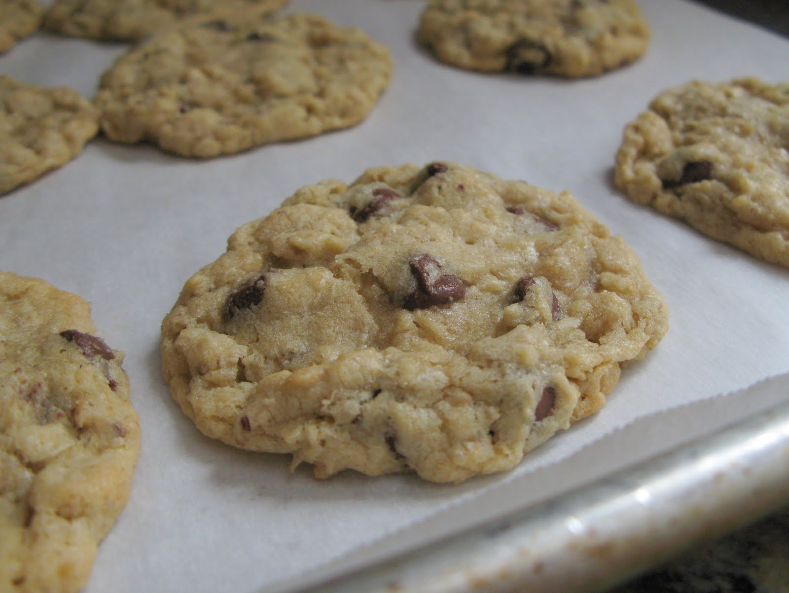Outrageous Oatmeal Chocolate Chip Cookies