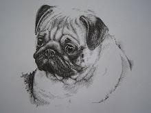 Hondenportret Mopshond