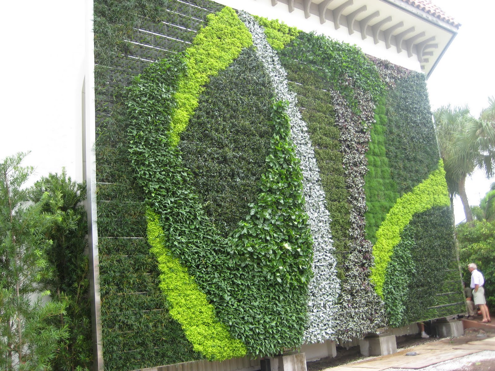 Sprout Green Wall In Palm Beach County