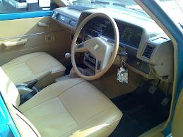 interior orsinil