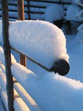 Så mycket snö-Januari 2010