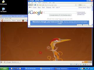 screenshot of ubuntu inside xp