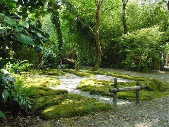 Join the Japanese Garden