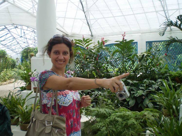 gnomos de jardim venda : gnomos de jardim venda: rondavam nossa vigília, na estufa das orquídeas do Jardim Botânico