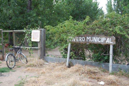 El nuevo emisario vivero municipal for Vivero municipal