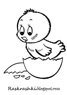 Раскрашка для малышей Цыпленок