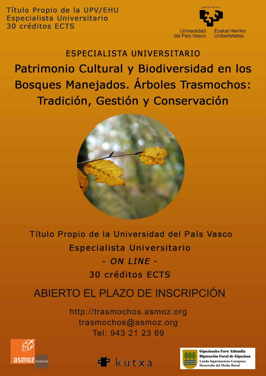 Centro de estudios ambientales taca postgrado on line - Arboles pais vasco ...