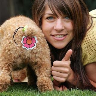 http://3.bp.blogspot.com/_fjufwKGU7Q8/Sya_pTnddUI/AAAAAAAAAqo/Auq_AdCzOfU/s320/animal+butt+cover