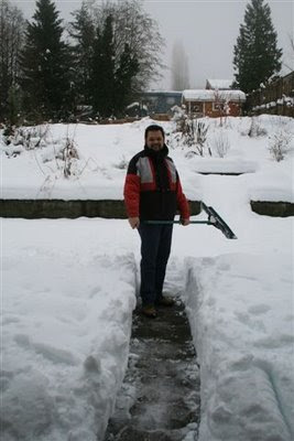 Clearing the snow on the deck
