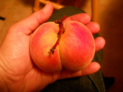 Pretty peach in hand