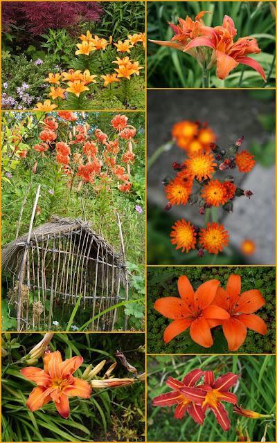 Orange flower mosaic
