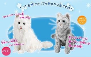 Dream Pet - Cat