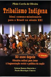 Tribalismo Indígena ideal comuno-missionário para o Brasil no século XXI