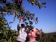 Drew and Daddy pick apples