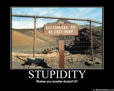 stupidity demotivational