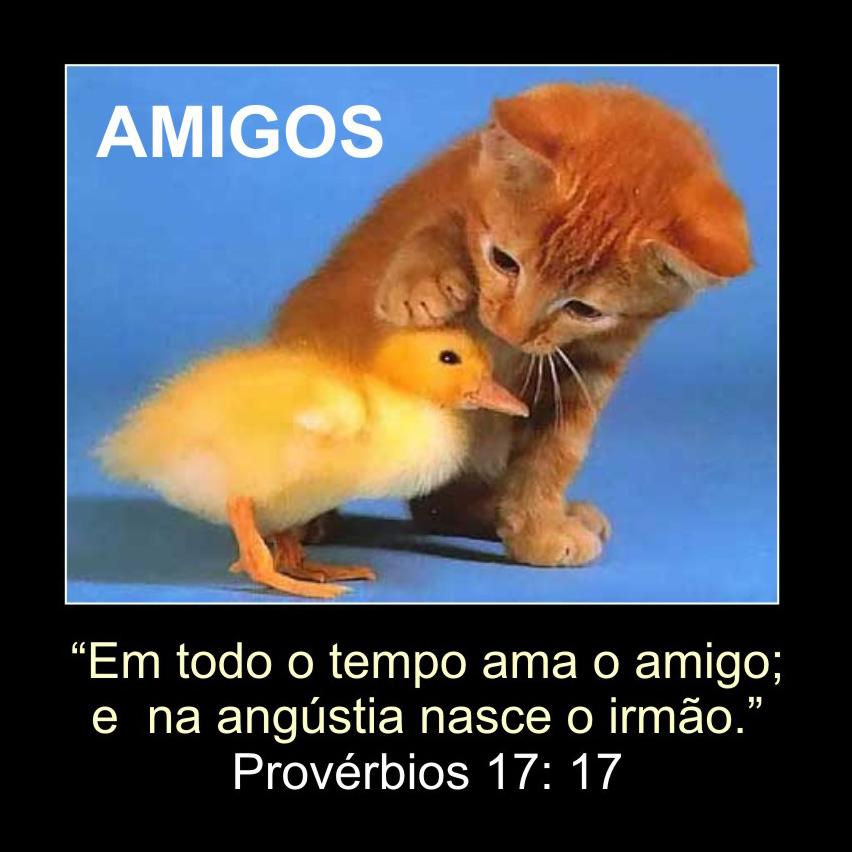 Versiculos Biblicos De Amistad Paraayudarinfo Auto