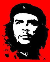 Che: Revolutionary or T-shirt Icon?