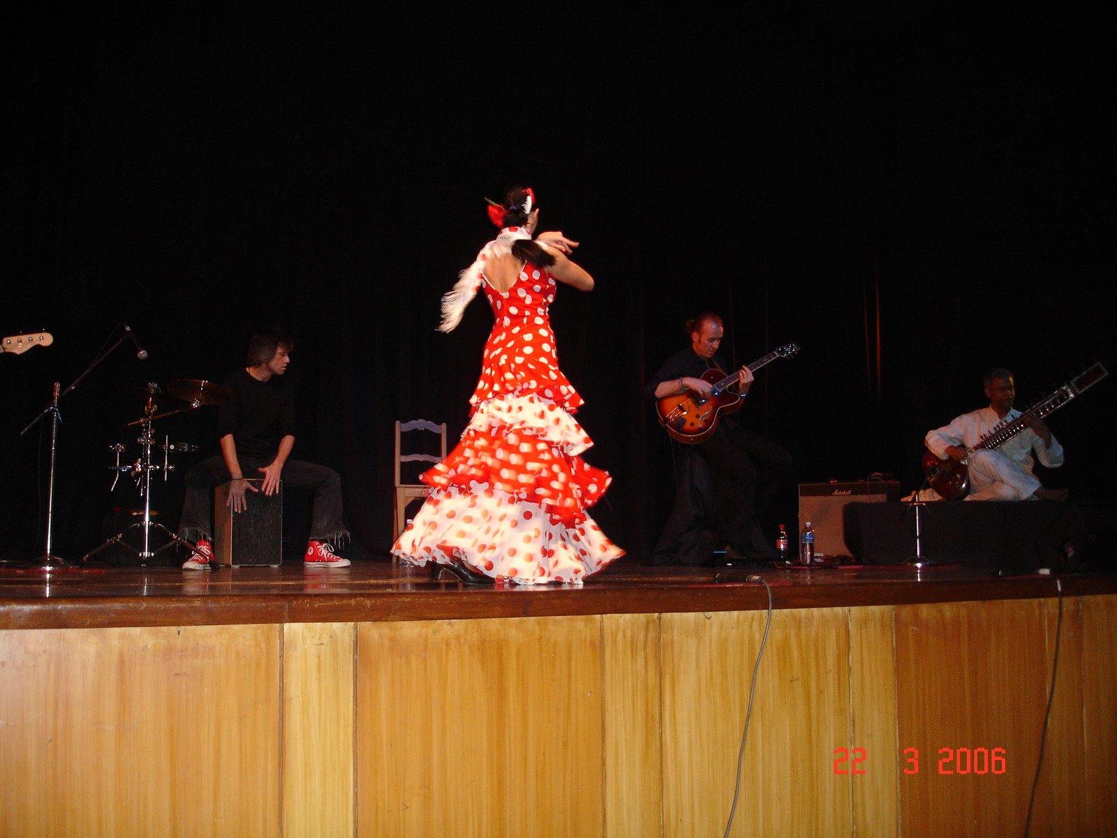[flamenco+024.jpg]