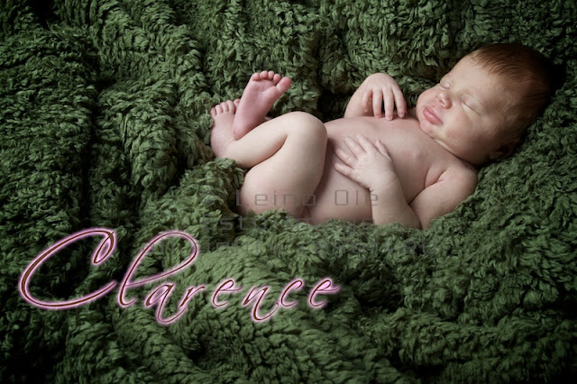 2010 04 22 ESTO 7531 Little miracle Clarence   Montreal newborn photographer