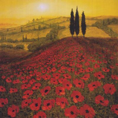 Flanders Field Poppies