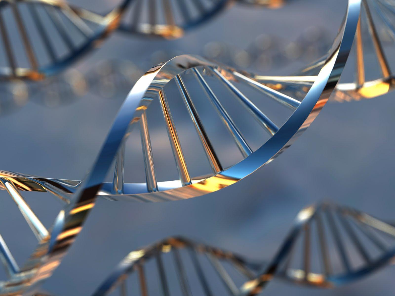 [DNA+2.dat]
