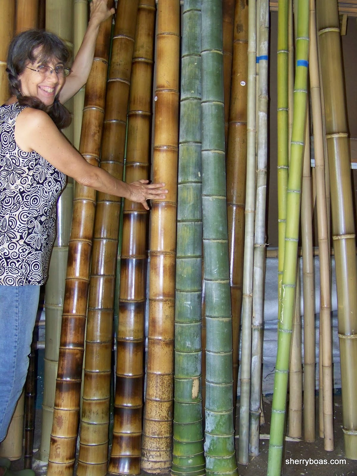 Beautiful bamboo elephant leg bamboo poles for Where to buy bamboo sticks for crafts