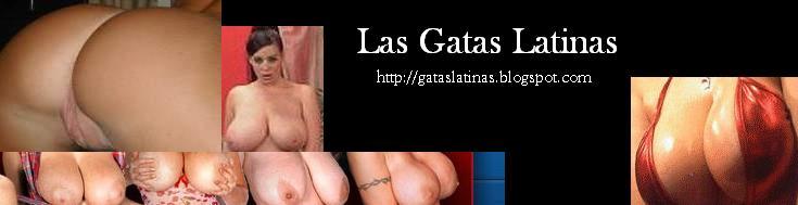 Las Gatas Latinas- Una buena culeada