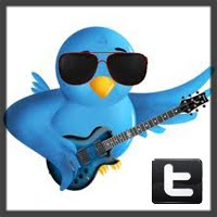 vertical twitter.