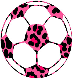 GO PINK PANTHERS