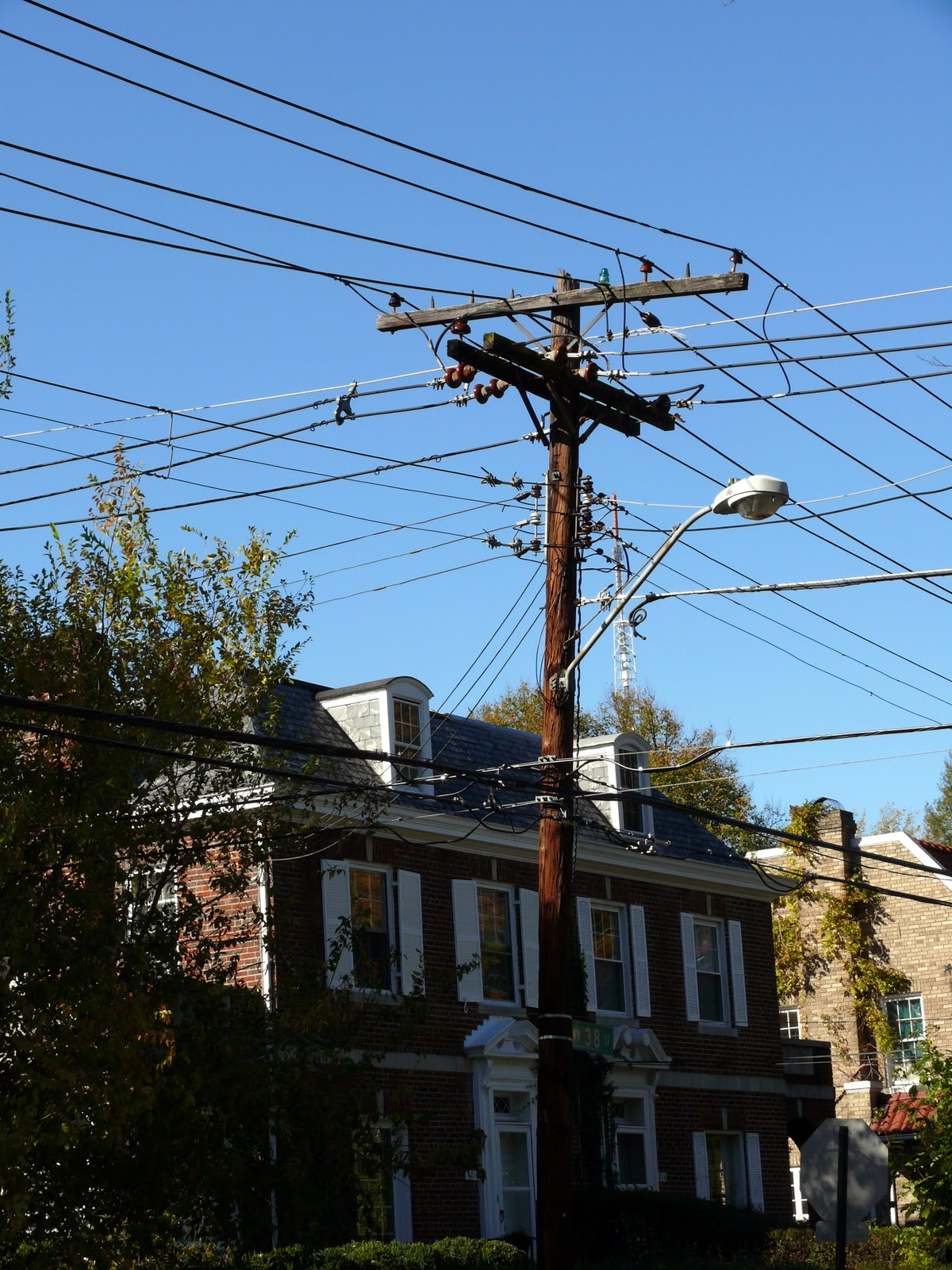 All Life Is Local: Should We Put Power Lines Underground?