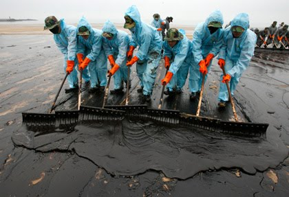 Oil Effects Effects of Oil Spills on