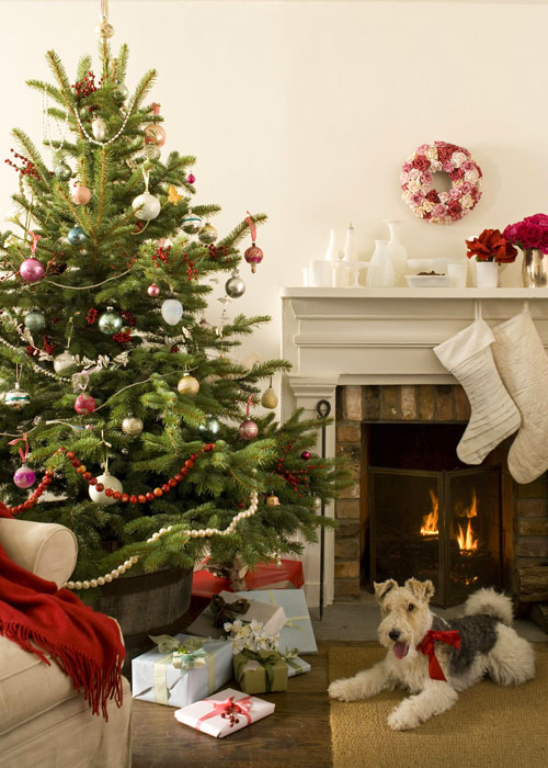 Cozy Christmas Interiors