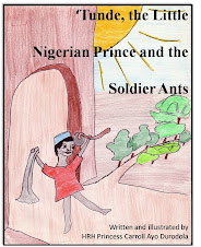 Cover, Tunde and the Soldier Ants the e-book